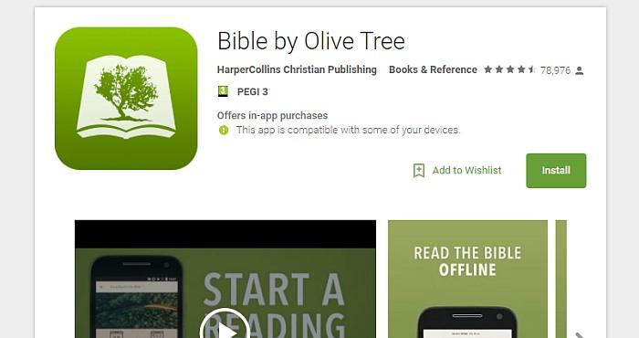 Bible-Olive-Tree